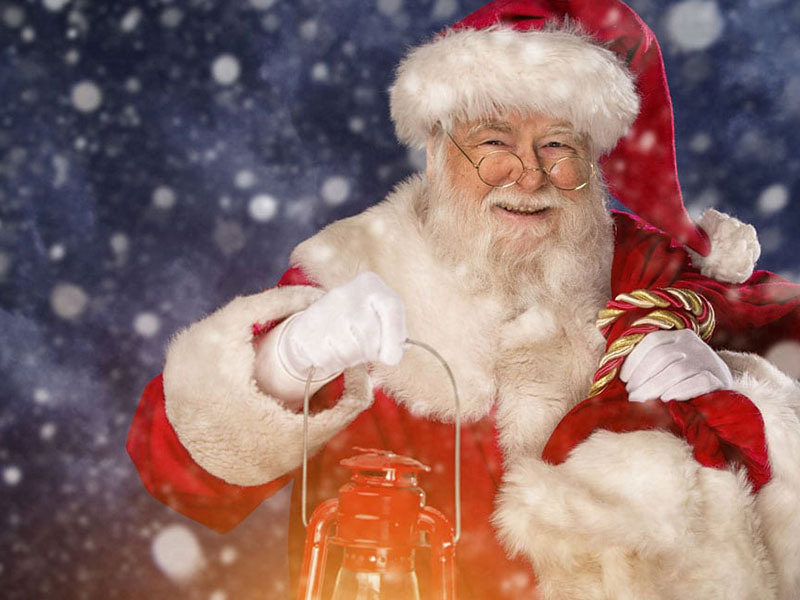 Journée Arbre de Noel